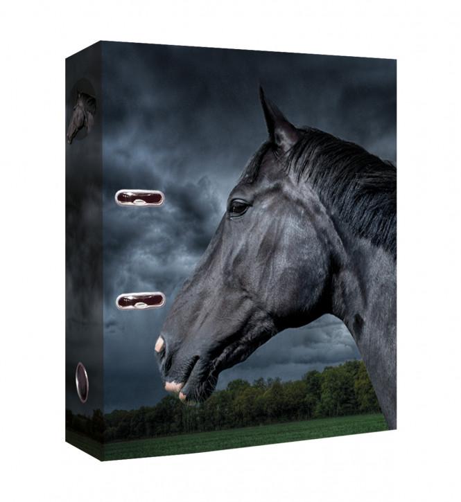 Uli Stein Foto Ordner Pferd, schwarz