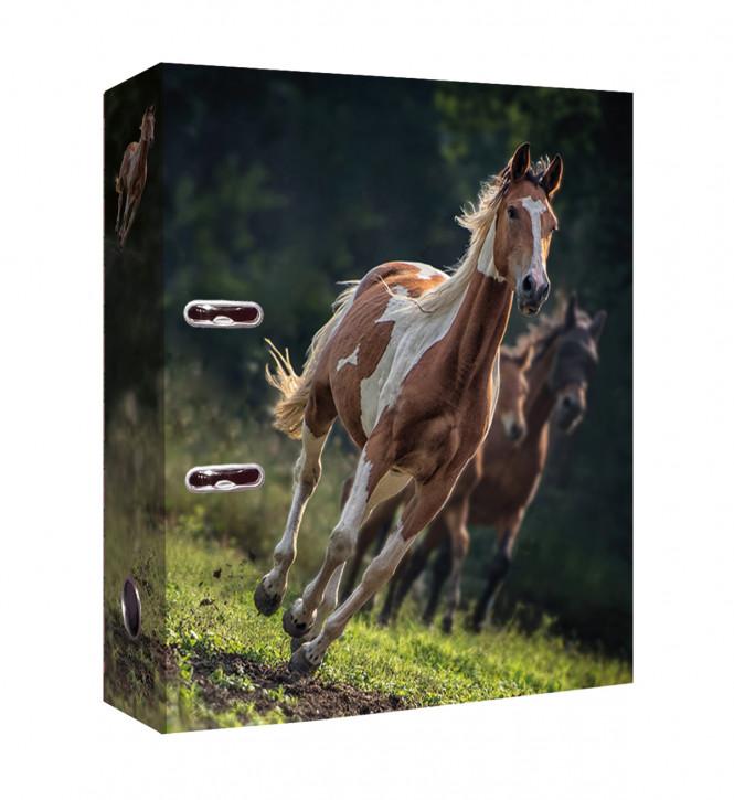 Uli Stein Foto Ordner Pferd, braun