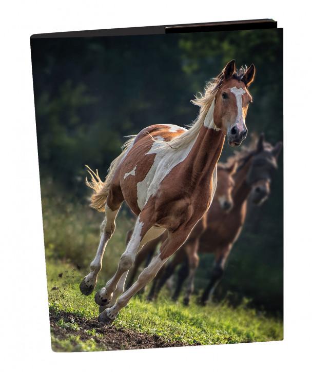 Uli Stein Heftbox Pferde, braun