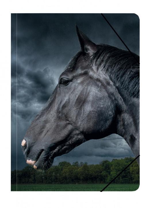 Uli Stein Foto Kunstmappe A3 Pferd, schwarz