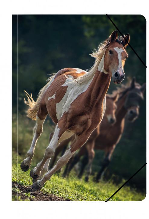 Uli Stein Foto Sammelmappe A4 Pferd, braun