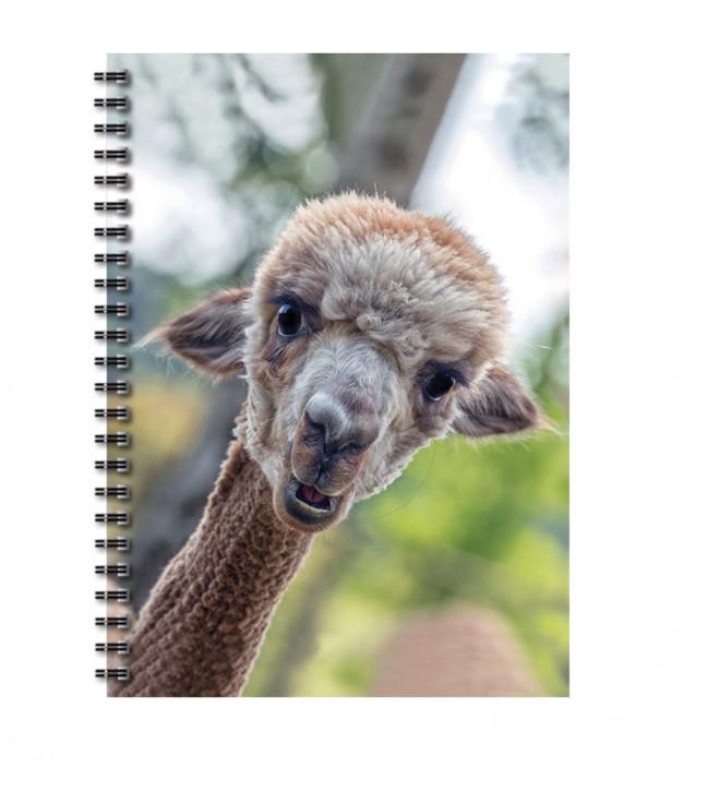 "Uli Stein Foto Blankbook Alpaka ""Bonita"""