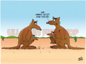 Postkarte Känguru Katzenklappe