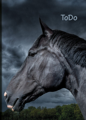 Uli Stein Aufgabenheft A5 Pferd, schwarz