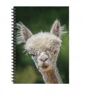 "Uli Stein Foto Blankbook Alpaka ""Karl"""