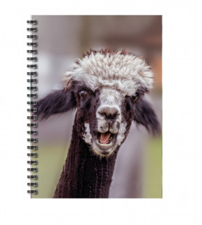 "Uli Stein Foto Blankbook Alpaka ""Wilhelm"""